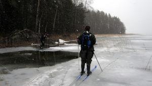 Vapaaehtoinen norppalaskija Toni Koskinen kiertää sulia Saimaalla.