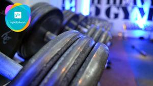 Hantlar på rad i ett gym.