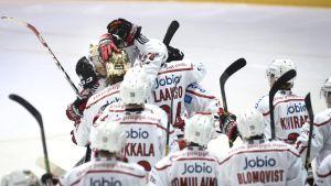 Vasa Sports spelare jublar över mål, Blues-Sport, 17.11.2015.