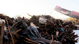 Puutarhajätteestä eroteltua tavaraa HSY:n Ämmässuon