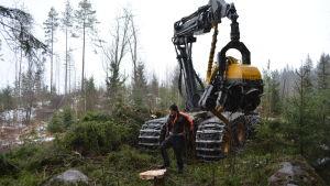 Skogsmaskin i Illbyskogarna