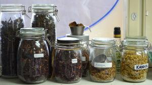 Växter och örter istället för kemikalier hos ekofrisören.