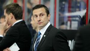 Ville Peltonen assiterar i det finska landslaget.