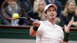 Andy Murray till semifinal i Paris.