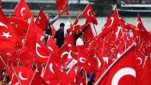 Demonstration för Turkiets president Erdoğan i Köln.