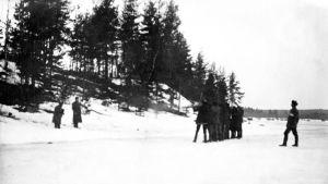 Två röda avrättas i Kiviniemi i Karelen 11.4.1918.