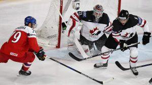 Tjeckien-Kanada i VM i ishockey.