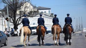 Fyra poliser på polishästar fotograferade bakifrån.