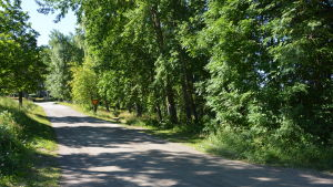 Parkeringsplatsen vid Bromarv hamn planeras nedanom Vättlaxvägen.