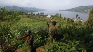 Regeringssoldater jagar nu medlemmar av rebellgruppen ADF som misstänks ha massakrerat 42 bybor nära staden Beni i provinsen norra Kivu