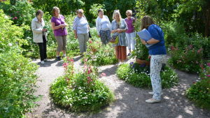 Maarit Lehto guidar besökare i Fredrikas trädgård vid Runebergs hem i Borgå.