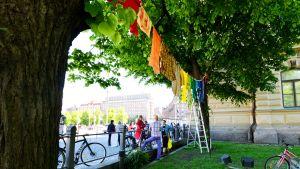 Tvätt hänger på Ateneums gård