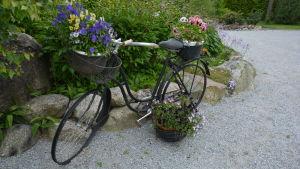 Cykel med blomkorgar.