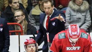 Antti Törmänen, Helsingfors IFK:s chefstränare