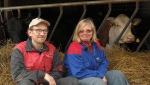 Mats Eriksson och Magdalena Ek sitter i en höstack med ett par kor i bakgrunden