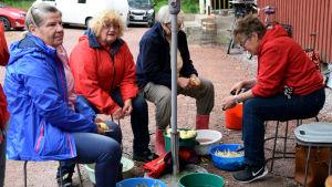 Fyra kvinnor sitter på pallar utomhus och skalar potatis.