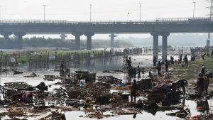 Människor letar efter återanvändbara saker i floden Yamuna i New Delhi i oktober 2016.