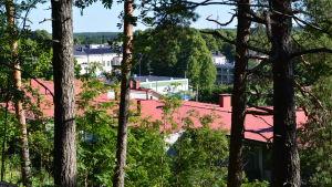 Från Kvarnåsen kan man se ut över Lovisas tak.