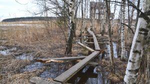 Saboterad naturstig vid fågeltornet i Ruskis i Borgå 2017