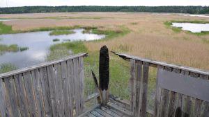 Vandaliserat fågeltorn på Svinö i Borgå 09.06.17