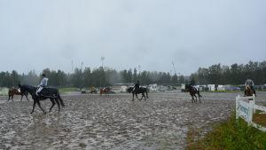 Sista ridtävlingarna på travbanan i Vasa.