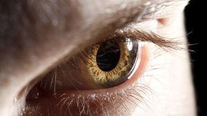 lähikuva silmästä, joka katsoo tiukasti