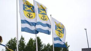 Flaggor.