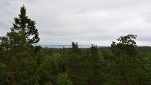 Utsikt från Senatsberget i Dalsbruk.