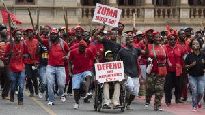 Anhängare till EFF demonstrerade med krav på Zumas avgång, Pretoria 2.11.2016