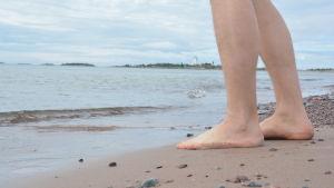 Bara ben vid havsbrynet på tullstranden.