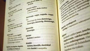 Finlandssvensk ordbok.