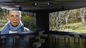 Tutkimuksia draaman ekologiasta 1, 2014, Serlachius-museot, Mänttä
