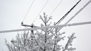 Snön ledde till elavbrott i Lappträsk.