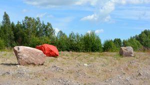 En röd sten bland några vanliga bumlingar.