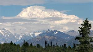 Denali, Nordamerikas högsta berg, 6168 meter över havet.