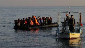 Flyktingar lotsas i land av grekiska fiskare.