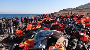 Satoja pelastusliivejä rannassa