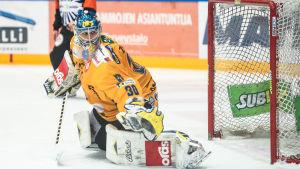 Ryan Zapolski, målvakt i Lukko.