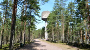 Vattentorn och träd
