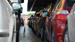 Bilar på en landsvägsfärja