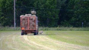 En traktor som kastar höbalar