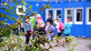 Buske med suddiga skolbarn och baracker i bakgrunden