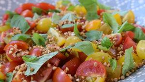 tomatsallad med kryddpeppargrädde