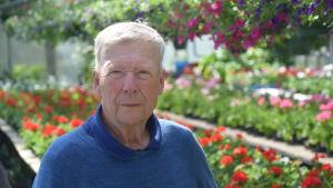 Pentti Stenius i sin handelsträdgård i Hagalund, Esbo.