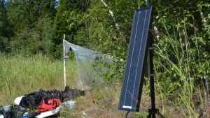 I förgrunden ser man en utrustning som lyssnar efter fladdermöss. I bakgrunden står ett sorts vitt tält som är en fälla för flygande insekter.
