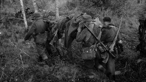 Jatkosodassa haavoittunutta sotilasta kannetaan.