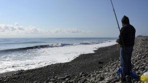 En fiskare står vid stranden Bois-Rouge vid ön Réunion där vrakdelar som kan ha tillhört det försvunna passagerarplanet MH370 flöt i land den 1 augusti.
