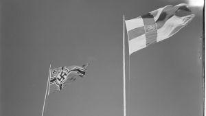 Hakaristilippu ja Suomen lippu jatkosodan aikaan