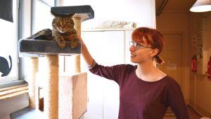 Matilda Ekholm och en katt i Tolkis katthus.
