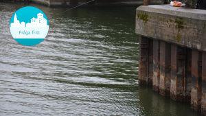 Vatten vid Strömma kanal